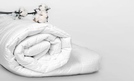 Betthygiene. Wie pflege und reinige ich meine Matratze am besten?